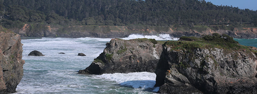 The Mendocino Coast